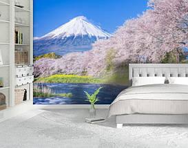Фотообои текстурированные, виниловые Горы, реки, 250х380 см, fo01inV_pr11982, фото 2