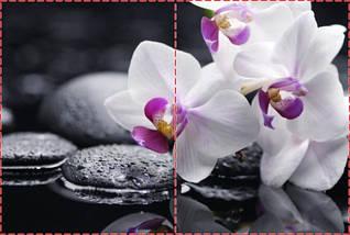 Фотообои бумажные гладь, Цветы, 200х310 см, fo01inB_fl101660, фото 2