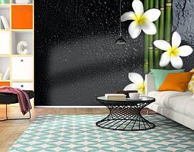 Фотообои текстурированные, виниловые Цветы, 250х380 см, fo01inV_fl11021, фото 3