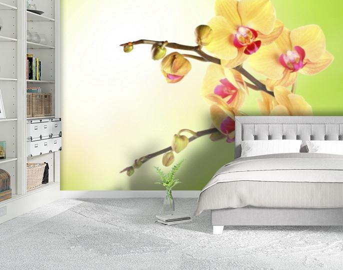 Фотообои текстурированные, виниловые Цветы, 250х380 см, fo01inV_fl12068