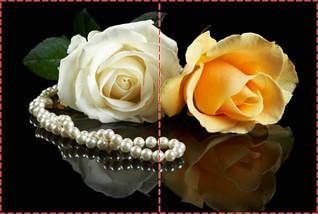 Фотообои бумажные гладь, Цветы, 200х310 см, fo01inB_fl11348, фото 2