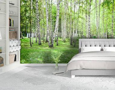 Фотообои текстурированные, виниловые Лес, 250х380 см, fo01inV_fs00007