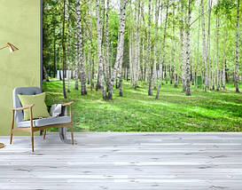 Фотообои текстурированные, виниловые Лес, 250х380 см, fo01inV_fs00007, фото 3