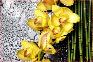 Фотообои бумажные гладь, Цветы, 200х310 см, fo01inB_fl13221, фото 2