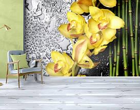 Фотообои бумажные гладь, Цветы, 200х310 см, fo01inB_fl13221, фото 3