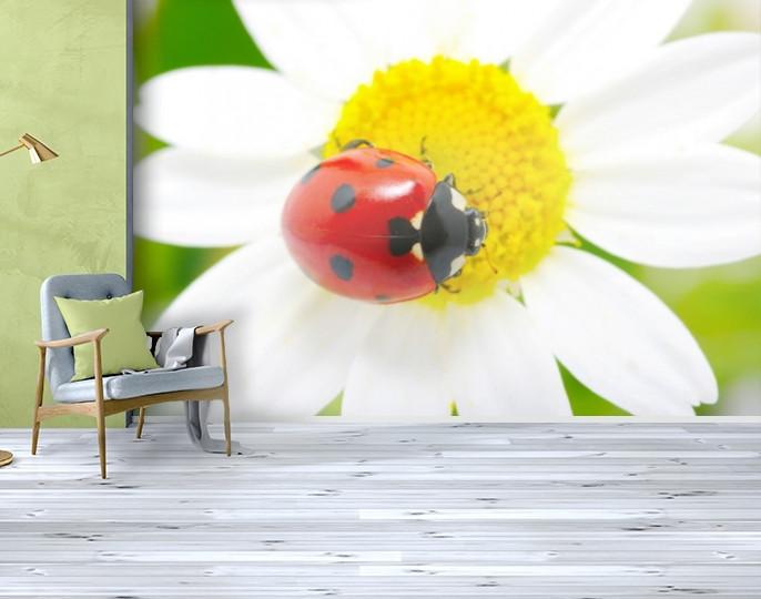 Фотообои текстурированные, виниловые Цветы, 250х380 см, fo01inV_fl12590