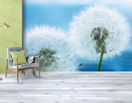 Фотообои бумажные гладь, Цветы, 200х310 см, fo01inB_fl10609, фото 2