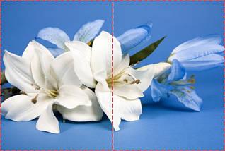 Фотообои бумажные гладь, Цветы, 200х310 см, fo01inB_fl102152, фото 2