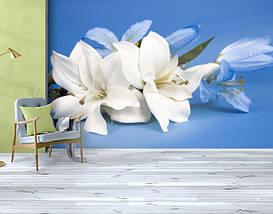 Фотообои бумажные гладь, Цветы, 200х310 см, fo01inB_fl102152, фото 3