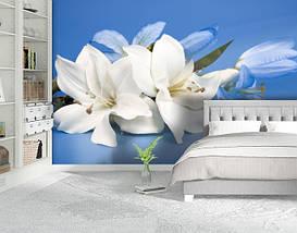 Фотообои текстурированные, виниловые Цветы, 250х380 см, fo01inV_fl102152, фото 2