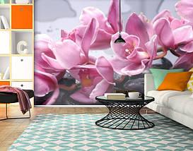Фотообои текстурированные, виниловые Цветы, 250х380 см, fo01inV_fl12917, фото 2
