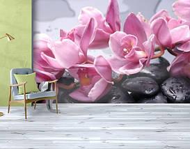 Фотообои текстурированные, виниловые Цветы, 250х380 см, fo01inV_fl12917, фото 3