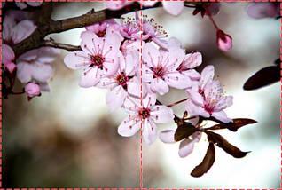 Фотообои бумажные гладь, Цветы, 200х310 см, fo01inB_fl101717, фото 2