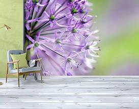Фотообои бумажные гладь, Цветы, 200х310 см, fo01inB_fl102690, фото 3