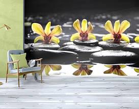 Фотообои бумажные гладь, Цветы, 200х310 см, fo01inB_fl12325, фото 3