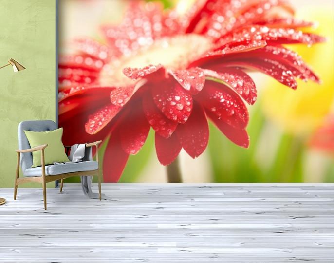 Фотообои бумажные гладь, Цветы, 200х310 см, fo01inB_fl10610