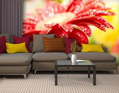 Фотообои текстурированные, виниловые Цветы, 250х380 см, fo01inV_fl10610