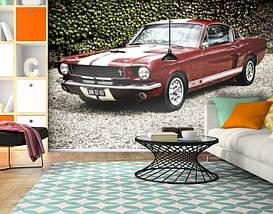 Фотообои текстурированные, виниловые Авто мир, 250х380 см, fo01inV_av11735, фото 3