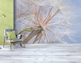 Фотообои текстурированные, виниловые Цветы, 250х380 см, fo01inV_fl13466, фото 3