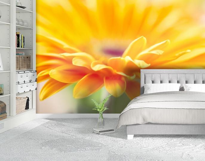 Фотообои бумажные гладь, Цветы, 200х310 см, fo01inB_fl102210