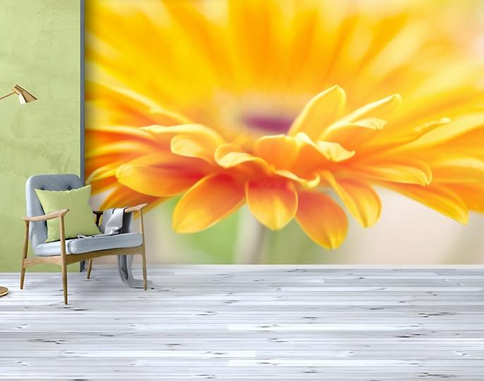 Фотообои текстурированные, виниловые Цветы, 250х380 см, fo01inV_fl102210