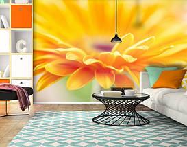 Фотообои текстурированные, виниловые Цветы, 250х380 см, fo01inV_fl102210, фото 3