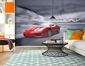 Фотообои текстурированные, виниловые Авто мир, 250х380 см, fo01inV_av11210, фото 3