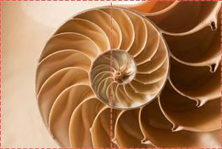 Фотообои бумажные гладь, Абстракция, 200х310 см, fo01inB_ab12160, фото 2