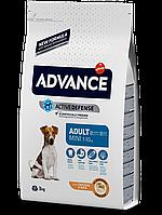 Сухой корм для собак мини пород Advance Mini Adult 0,8кг