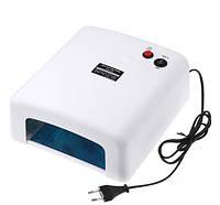 Лампа ультрафиолетовая SM-818
