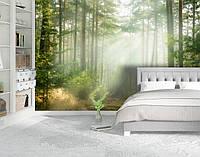 Фотообои текстурированные, виниловые Лес, 250х380 см, fo01inV_fs00032
