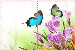 Фотообои бумажные гладь, Цветы, 200х310 см, fo01inB_fl102677, фото 2