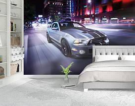 Фотообои текстурированные, виниловые Авто мир, 250х380 см, fo01inV_av11503, фото 2