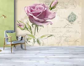 Фотообои бумажные гладь, Цветы, 200х310 см, fo01inB_fl11231, фото 3