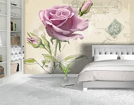 Фотообои текстурированные, виниловые Цветы, 250х380 см, fo01inV_fl11231, фото 2