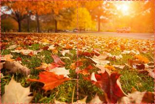 Фотообои бумажные гладь, Природа, 200х310 см, fo01inB_mw10849, фото 2
