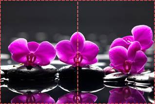 Фотообои бумажные гладь, Цветы, 200х310 см, fo01inB_fl13610, фото 2
