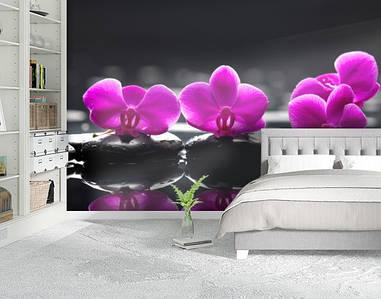 Фотообои текстурированные, виниловые Цветы, 250х380 см, fo01inV_fl13610