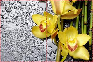 Фотообои бумажные гладь, Цветы, 200х310 см, fo01inB_fl13819, фото 2
