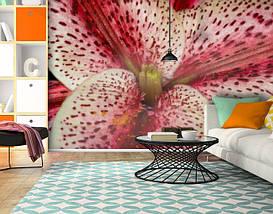 Фотообои текстурированные, виниловые Цветы, 250х380 см, fo01inV_fl101107, фото 3