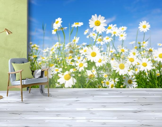 Фотообои текстурированные, виниловые Цветы, 250х380 см, fo01inV_fl11042