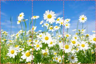 Фотошпалери текстуровані, вінілові Квіти, 250х380 см, fo01inV_fl11042, фото 2
