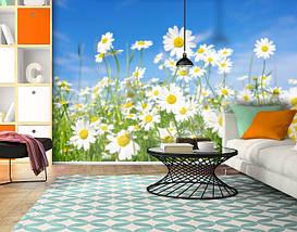 Фотошпалери текстуровані, вінілові Квіти, 250х380 см, fo01inV_fl11042, фото 3