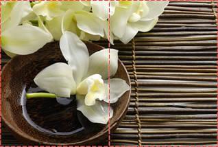 Фотообои бумажные гладь, Цветы, 200х310 см, fo01inB_fl13732, фото 2