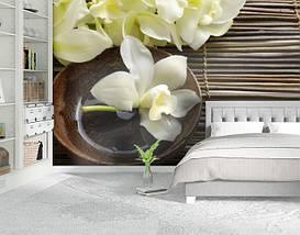 Фотообои текстурированные, виниловые Цветы, 250х380 см, fo01inV_fl13732, фото 2