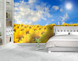 Фотообои бумажные гладь, Цветы, 200х310 см, fo01inB_fl12765, фото 2