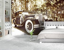 Фотообои текстурированные, виниловые Авто мир, 250х380 см, fo01inV_av11334, фото 2