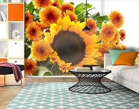 Фотообои бумажные гладь, Цветы, 200х310 см, fo01inB_fl13851, фото 3