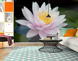 Фотообои текстурированные, виниловые Цветы, 250х380 см, fo01inV_fl10853, фото 3