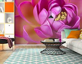 Фотообои текстурированные, виниловые Цветы, 250х380 см, fo01inV_fl13245, фото 3